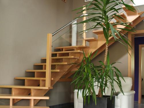 ES006 - Escalier hêtre